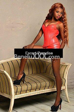 Black Escort Brussels - Ebony Escort & Erotic Massage in Belgium